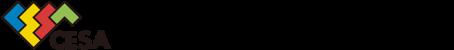 Computer Entertainment Supplier's Association